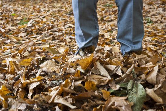 Herbstanfang - Wann beginnt der Herbst?