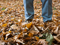 Herbstanfang - Wann ist Herbst?