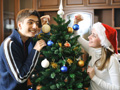 Was tun wenn der Weihnachtsbaum nadelt?